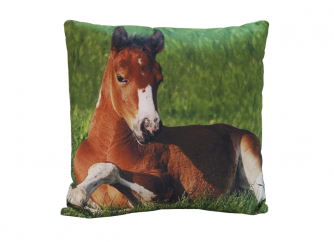 Decorative Cushion 02HORSE
