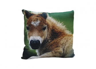 Decorative Cushion 01HORSE