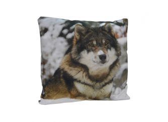 Decorative Cushion 01WOLF