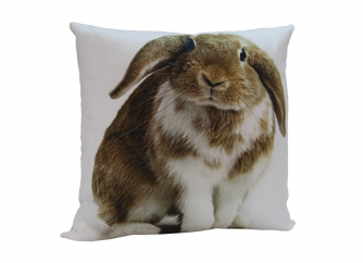 Decorative Cushion 01RABBIT