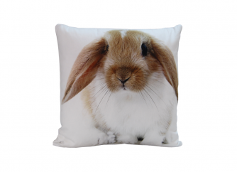 Decorative Cushion 02RABBIT