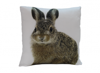 Decorative Cushion 03RABBIT