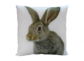 Decorative Cushion 05RABBIT