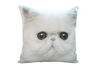 Decorative Cushion 02CAT