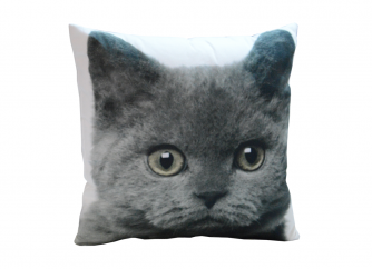 Decorative Cushion 03CAT