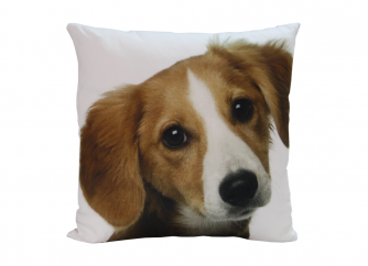 Decorative Cushion 02DOG