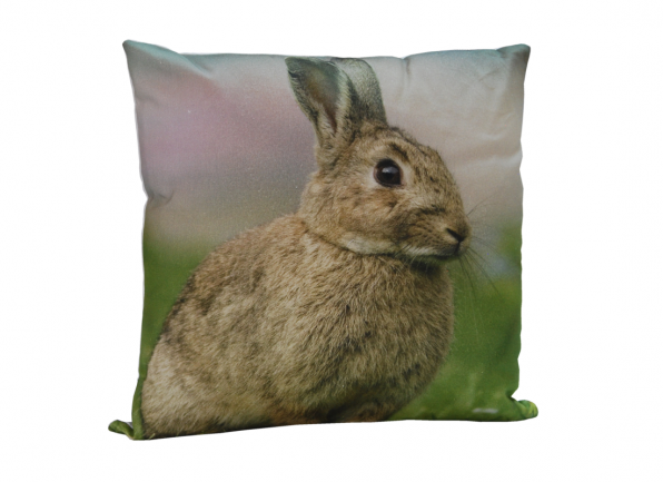 Decorative Cushion 04RABBIT